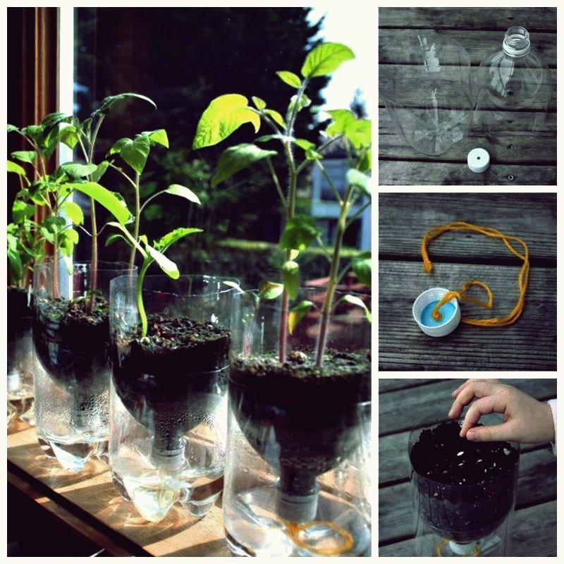 Kreative selbst gemachte Wasser-Berieselungsanlagen von der Plastikflasche