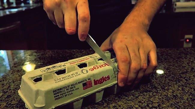 3 nützliche Eierkarton-Hacks, die Sie kennen sollten