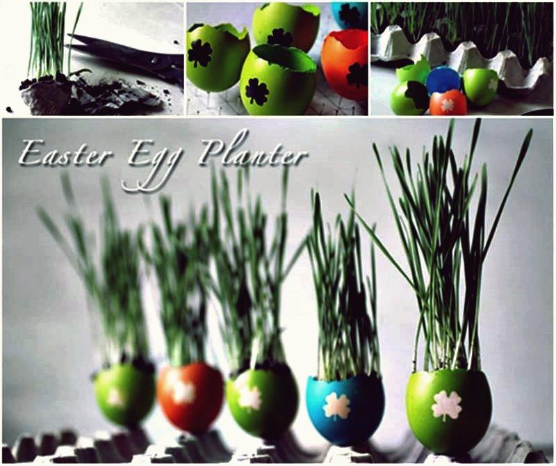 DIY Easter Eggshell Planters