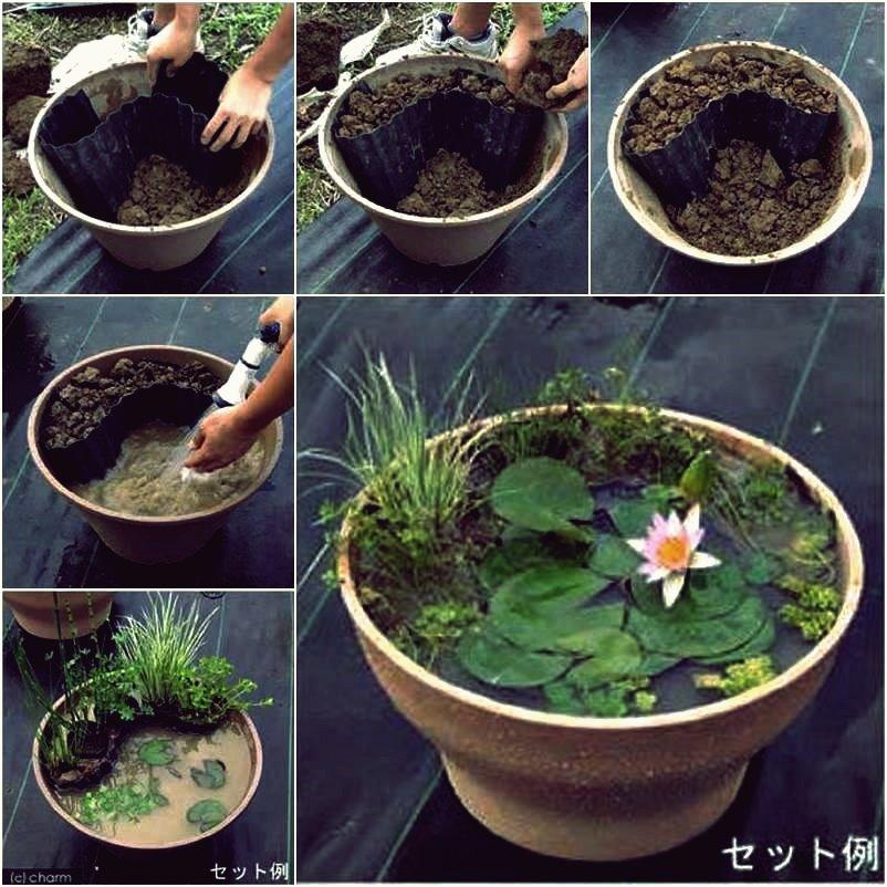 DIY Mini Pond von Old Tire