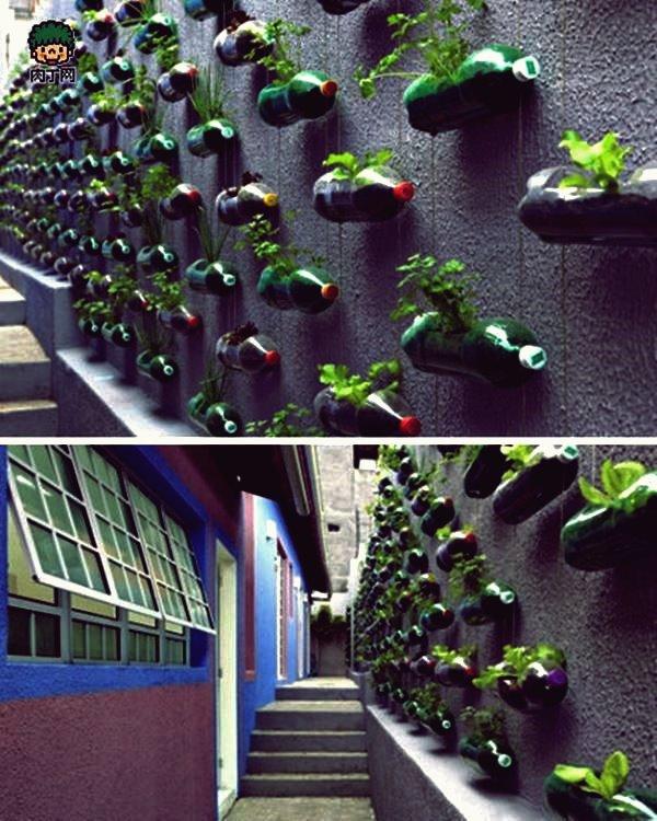 Kreative Blumentopf-Ideen