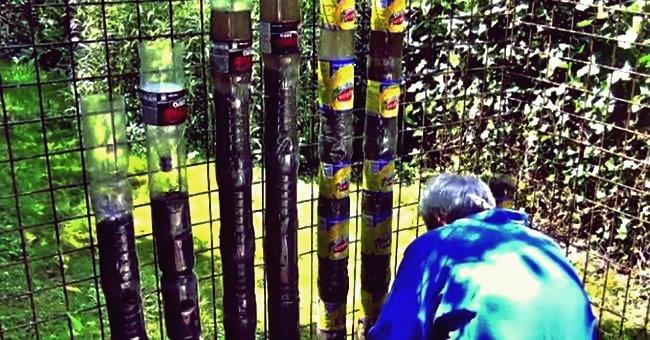 Kreative Ideen - Wie aus Soda-Flaschen ein nachhaltiger Turmgarten wird