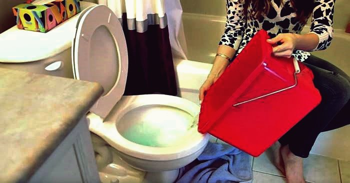 Kreative Ideen - wie man die Toilette ohne Kolben verstopft