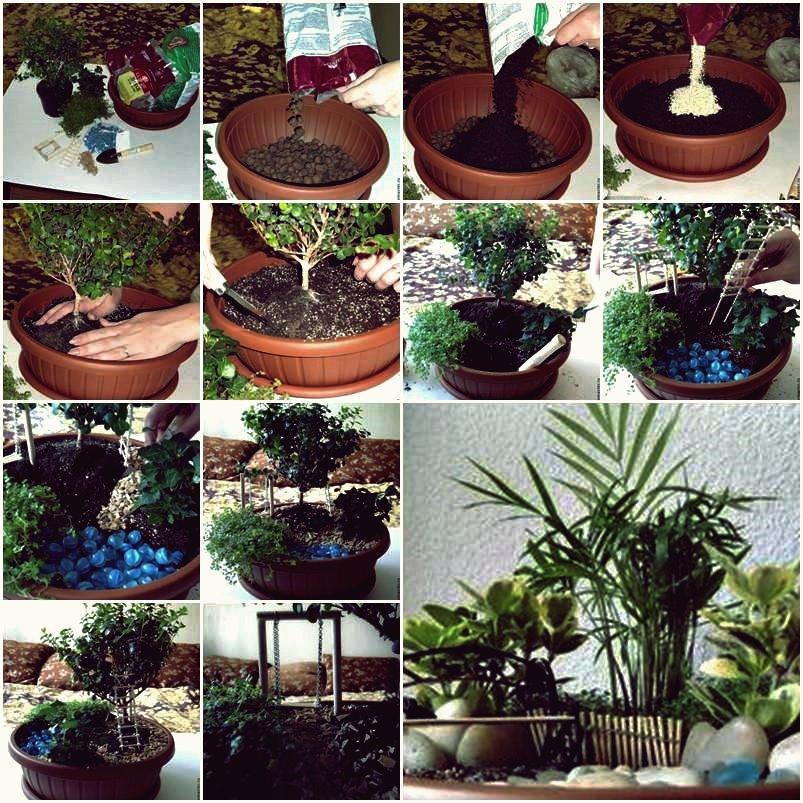 Mini Garden in einem Topf